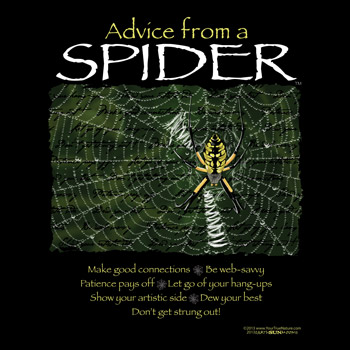 advice from a spider