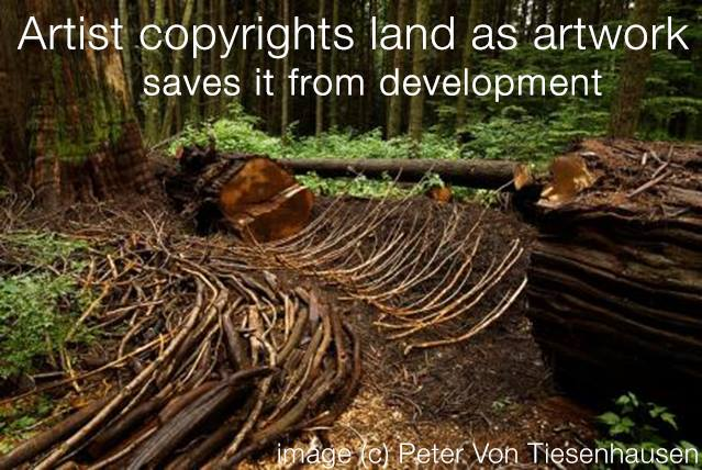 artist copyrights land as artwork