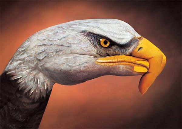 eagle handpainting