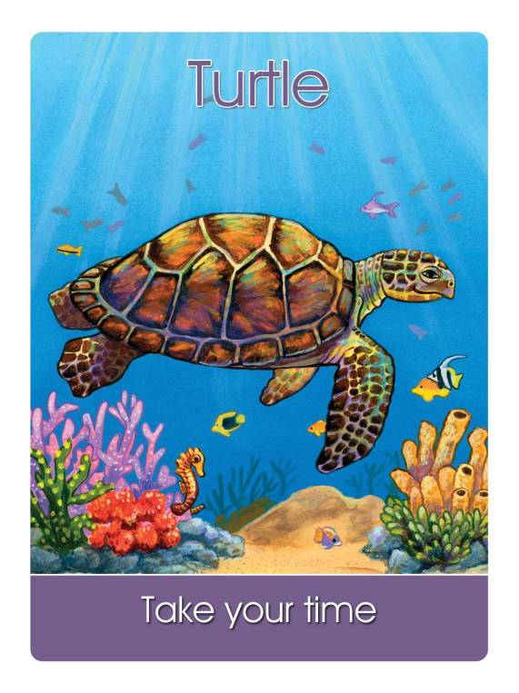 turtle - take your tie