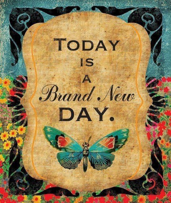 brand new day1