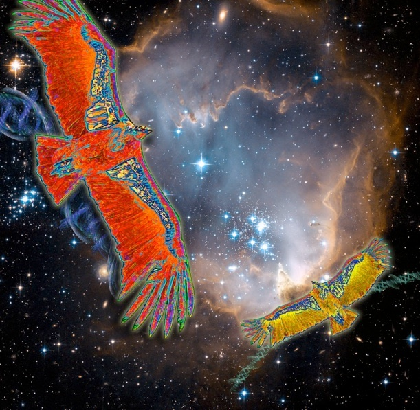 California Condor in Nebula, by artist Marv Lyons - http://www.pinterest.com/pin/45317539970784027/