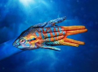 Hand painting by Guido Daniele - paradise fish