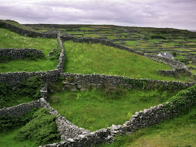 Image from http://www.walltor.com/wallpaper/stone-walls-and-pastures-along-galway-bay--ireland-108119